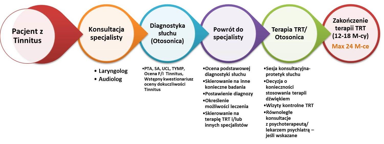 Terapia szumów usznych - schemat diagnostyki szumów usznych